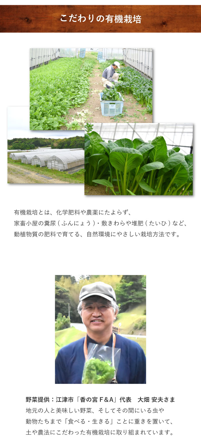 リセラの選んだ地元のお野菜02